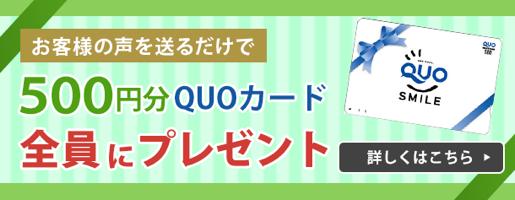 お客様の声を送った方にQUOカード500円をプレゼント!